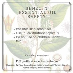 Learn more about benzoin essential oil with this essential oil profile, including safety tips. Essential Oil Safety, Are Essential Oils Safe, Benzoin Essential Oil, Safety Tips, Aromatherapy, The Cure, Essentials, Profile, Skin Products