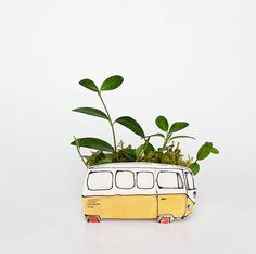 Small planter perfect for cactus or succulent. Perfect cactus or succulentSmall yellow Westfalia planter. Perfect cactus or succulent Ceramic Planters, Planter Pots, Succulent Planters, Hanging Planters, Small Plants, Air Plants, Cactus Plants, White Clay, Air Dry Clay