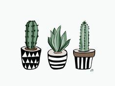 Cactussen 🌵 to drawing cactus Cactus Drawing, Cactus Painting, Plant Drawing, Cactus Art, Baby Cactus, Cactus Plants For Sale, Cactus House Plants, Indoor Cactus, Plants Indoor