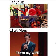 ) - Yes Chat Noir we know Ladybug is great; Ladybug Comics, Miraclous Ladybug, Lady Bug, Les Miraculous, Ladybug And Cat Noir, Miraculous Characters, Marinette And Adrien, Miraculous Ladybug Fan Art, Kids Shows