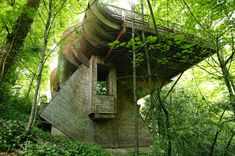 What an interesting structure/house. Like a airplane wing that got lost in the jungle.