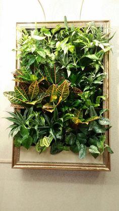 Картина ) Plant Wall, Plant Decor, Vertikal Garden, Living Wall Planter, Artificial Green Wall, Hanging Plants, Indoor Plants, Hydroponic Farming, Green Facade