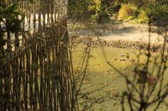 Estany de Vallvidrera #Vallvidrera #landscape #paisaje #photo #nature #natura