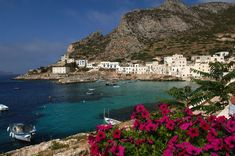 Find Levanzo Trapani Sicily Italy stock images in HD and millions of other royalty-free stock photos, illustrations and vectors in the Shutterstock collection. Thousands of new, high-quality pictures added every day. Places In Italy, Places To See, Dream Vacations, Vacation Spots, Trapani Sicily, Cruise Italy, Best Of Italy, Cruise Destinations, Italy Tours