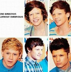 One Direction with no eyebrows! Niall and Louis actually don't look too bad! Haha. The others look like hairless cats... SCARY.