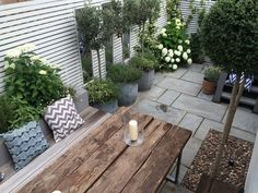 Slim & Subtle Rear Garden : Jardins modernos por Garden Club London
