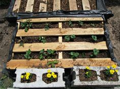 DIY Pallet Garden: How to make Raised Wood Pallet Garden Bed - DIY Garden