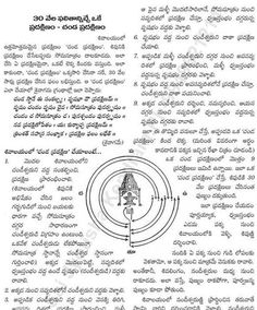 Vedic Mantras, Hindu Mantras, Dimensions Universe, All Mantra, Hindu Vedas, Kali Hindu, Hindu Rituals, Lakshmi Images, Hindu Dharma