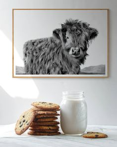 Fine art photography print of Biscuit our Scottish Highlander Cow. - Fine art photography print of Biscuit our Scottish Highlander Cow. This little guy was captured ear - Modern Prints, Modern Wall Art, Highland Cow Art, Wall Art Prints, Fine Art Prints, Cow Decor, Living Room Decor Country, Paper Plants, Minimalist Art