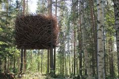 The Bird's Nest Tree House, Sweden This tree house, by the creators of the Tree Hotel, might confuse the birds even more. Although it looks like a massive nest from the outside, the house has a modern and high-standard room built inside. Treehouse Hotel, Cool Tree Houses, Tree House Designs, In The Tree, Glamping, Feng Shui, Around The Worlds, Exterior, Birds