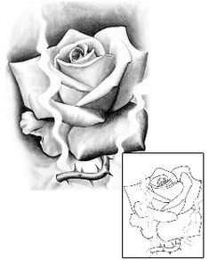 Tattoo Johnny – we have massive collection of tattoos designed by Spider . Floral Tattoo Design, Flower Tattoo Designs, Flower Tattoos, Make Tattoo, Tattoo Art, Bob Tyrrell, Corey Miller, Rosa Tattoo, James Francis