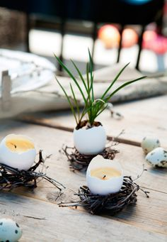 Äggskalen blir ljus i näste - easter egg candles Diy Egg Candles, Shell Candles, Easter Season, Egg Decorating, Deco Table, Flower Centerpieces, Easter Wreaths, Flower Making, Easter Crafts