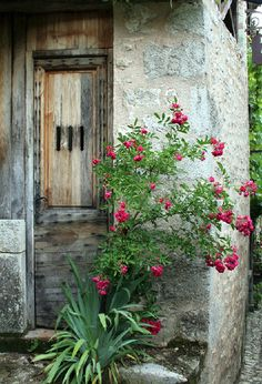 abriendo-puertas:    Dordogne. France. By Susette Willhite ... I just wonder who has passed through this door
