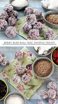 DIY Dog Treat Recipe | No Bake Berry Bliss Ball Dog Truffle Treats| These are easy to make, can be customised to your dog's favourite fruits or veggies.