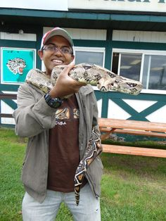 amazing Red Tail Boa Constrictor from South America - only at Jungle Cat World - Orono, Ontario