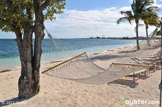 Beach at the Old Bahama Bay Resort & Yacht Harbour