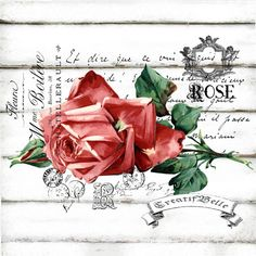 French Victorian Rose Large A4 Instant Digital by CreatifBelle