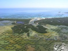 Integrating architecture and ecology, this proposal for a modular natural dam design could help defend coastal communities from climate change-induced natural disasters. Landscape And Urbanism, Landscape Design, Urban Landscape, Mangrove Forest, Agricultural Land, Sea Level Rise, Parking Design, Climate Change, National Parks