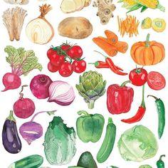 Vegetable Drawing, Vegetable Cartoon, Vegetable Painting, Illustration Artists, Food Illustrations, Botanical Illustration, Watercolor Illustration, Fruit Illustration, Vegetable Design