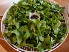 Dehydrating spinach