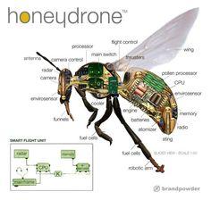 robotic bees - Get y