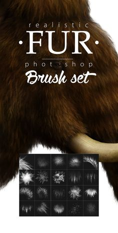 Fur Realistic Painting Brushes for Photoshop - Artistic Brushes