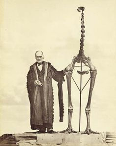 English paleontologist Sir Richard Owen, in 1879, with a Moa skeleton found in New Zealand