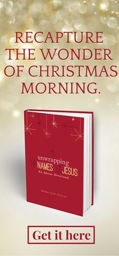 It's hard to celebrate someone you don't really know. Spend this holiday season falling in love with Jesus and recapture the wonder of Christmas morning.