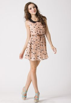 Swallow Print Peter Pan Collar Dress - New Arrivals - Retro, Indie and Unique Fashion