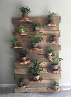 I made this wall plant holder the other day using a wood box spring mattress frame, pallet wood and a cedar log that I cut into slabs and then in half. Was fun. Wall Plant Holder, Rope Plant Hanger, Macrame Plant Holder, Plant Wall, Plant Holders, Plant Decor, Hanging Flower Baskets, Hanging Plants, Mattress Frame