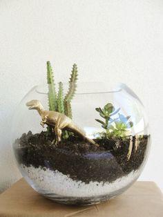terrarium dinosaurs - Google Search