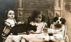 Tea party with furry friends......