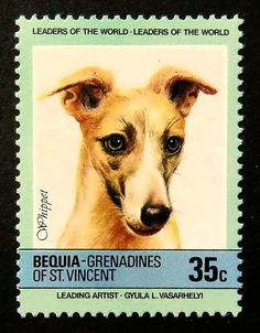 Whippet Dog Handmade Framed Postage Stamp by PassionGiftStampArt