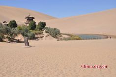 'First Spring in Sand' in Gansu - People's Daily Online
