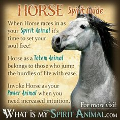 HORSE Represents (Free Spirit ). .. Amongst Other Things ...