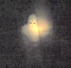 There has been tales of the Albino Bigfoot in the Ferry County Woods in Oregon for many years. Also, there are NUMEROUS reports of a white sasquatch-like creatures in Pennsylvania. Bigfoot Pictures, Bigfoot Pics, Bigfoot Video, Bigfoot Sightings, Strange Noises, Bigfoot Sasquatch, Unexplained Mysteries, Mothman, Cryptozoology