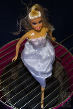 Time for BarbieQ | Flickr - Photo Sharing!