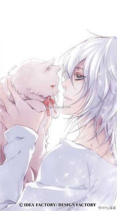 Cute anime boy and a fluffy white cat