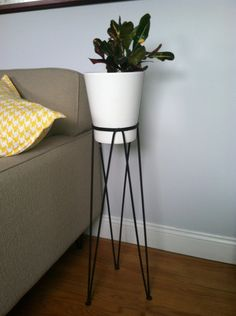 Wrought Iron Hairpin Leg Plant Stand