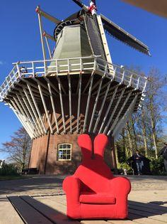 #Honeydewrabbit  #허니듀래빗 #암스테르담 #Amsterdam #Keukenhofbos