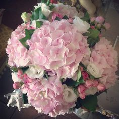 Pink Dream flowers gildakoral flora