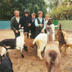 The Beach Boys 'Pet Sounds' album photoshoot