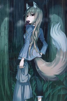 Anime Neko, Kawaii Anime, Anime Art, Spice And Wolf Holo, Wolf Girl, Artwork Pictures, Animal Ears, Furry Art, Cool Art