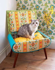 Cat bed project from Chloe Tells You How, wallpaper from pommel de jour boutique