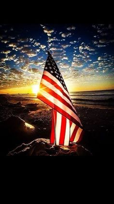 Seal of Honor ~ I pledge Allegiance to the flag of the United States of America and to the republic for which it stands. One nation under God, indivisible, with Liberty and Justice for all. American Flag Wallpaper, American Flag Eagle, American Pride, American History, American Flag Pictures, Eagle Pictures, I Love America, God Bless America, South America
