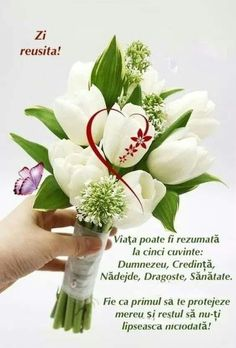 Good Morning Greetings, Happy Birthday, Lily, 8 Martie, Spirituality, Samsung, Decor, Frases, Beautiful Pictures