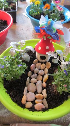 Fairy Gardens - perfect for enrollment!