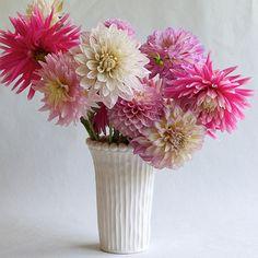 Phoebe Narrow Beaded Vase | Frances Palmer Pottery