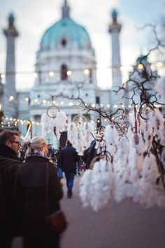 Christmas in Vienna can be as magical as a fairytale. This is a beautiful Christmas Market in Karlsplatz Blog Pictures, Beautiful Christmas, Fairytale, Christmas Time, Travel Inspiration, Instagram, Vienna, Fairy Tail, Fairytail