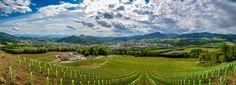 Aussicht auf Sankt Veit an der Glan (Kärnten) | Flickr - Photo Sharing! Vineyard, Mountains, Nature, Travel, Outdoor, Pictures, Good Day, Outdoors, Naturaleza